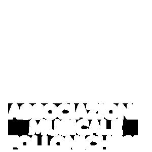 Scuola Comunale di Musica Follonichese | AMF Associazione Musicale Follonichese
